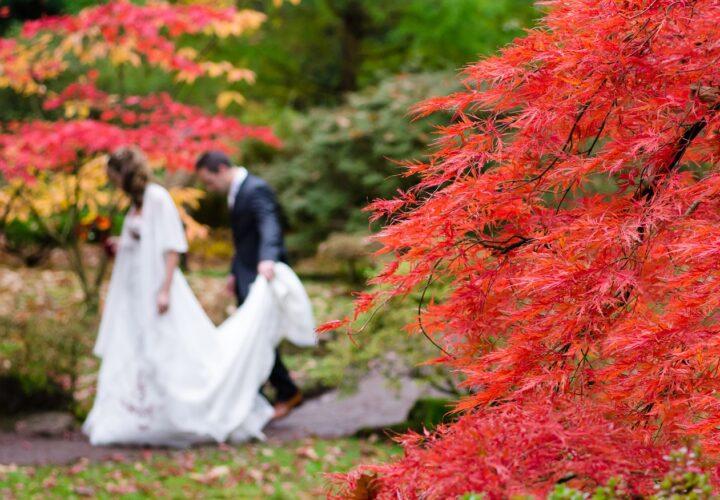 Fraud Scenarios On Matrimonial Websites