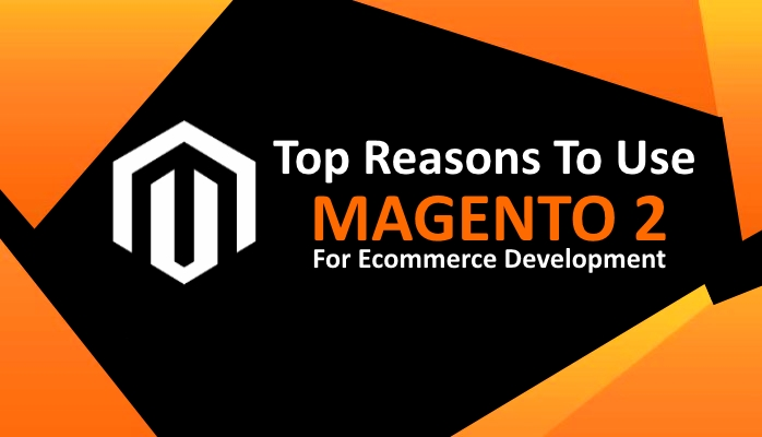 Why Magento 2 Ecommerce Is Perfect for End Users, Storeowners and Developers