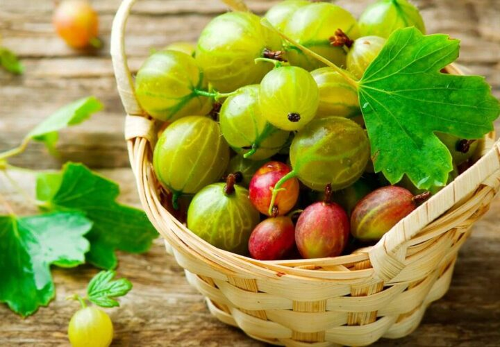 Buy Amla Juice Online For Better Immunity