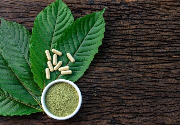 FARMERS AND BUSINESSES OF KRATOM AND ITS LEGALITY