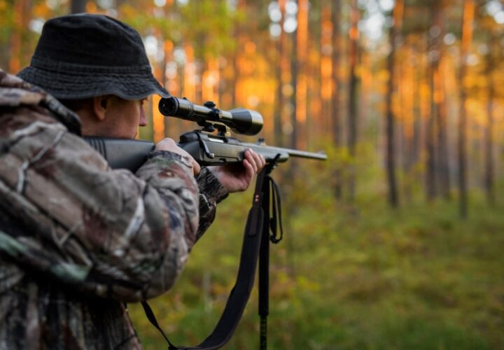 Top 10 Deer Hunting Tips for Beginners
