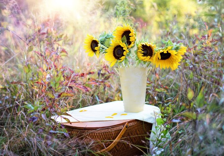 Know Why You Should Choose Online Flower Delivery?