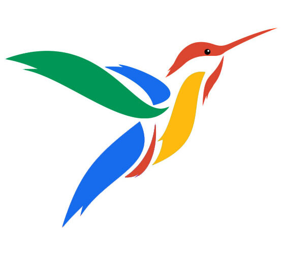 Google's Hummingbird – Let's Come Out of All Confusions