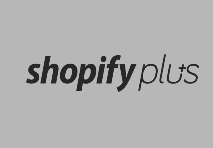 How Much Does Operating on Shopify Plus Cost?
