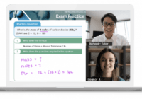 The Most Important Facts About Online Tutoring At A Glance