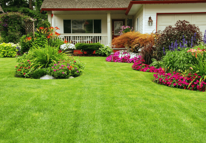 Landscaping in The Summer Is A Wise Idea