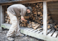 Tips to Choose The Variety Of Firewood For The Perfect Occasion