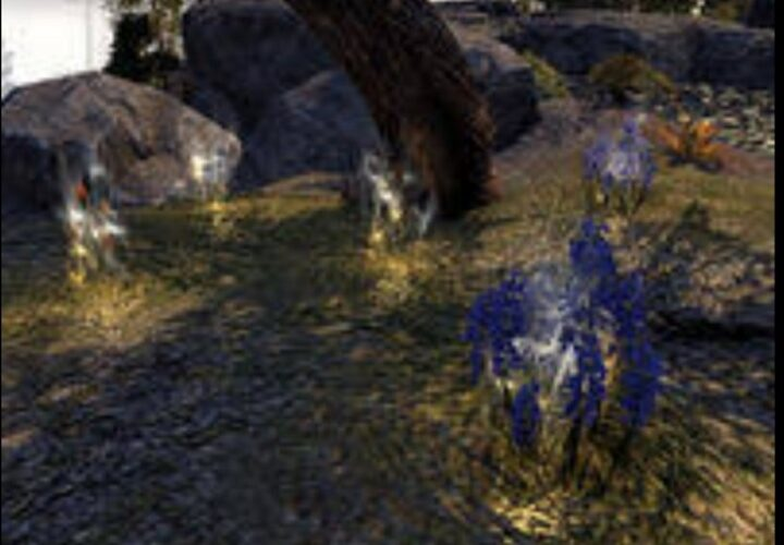 Sip Of Health In ESO Mastery Guides Review