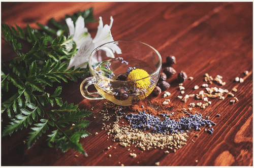Top 5 Ayurvedic Herbs that Cleanse Your Body