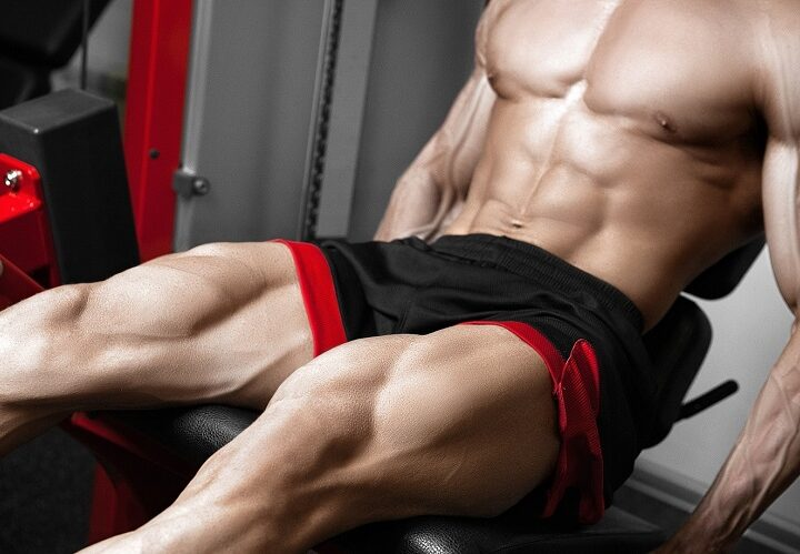Muscle Mass 101 – What is Bulking?