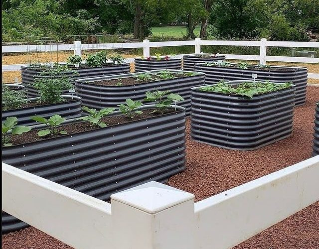 Metal Raised Garden Beds – Reasons to Utilize Them For Gardening?