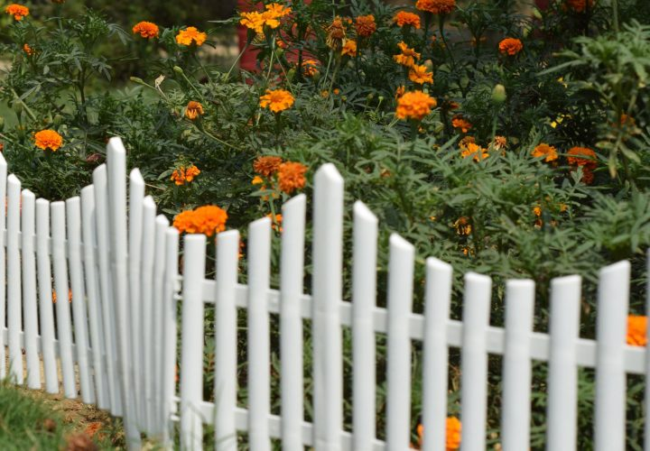 Garden fence ideas which is Easy to install